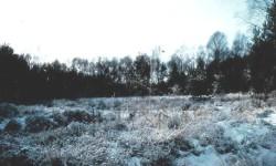 Moorgebiet Boldecker Land