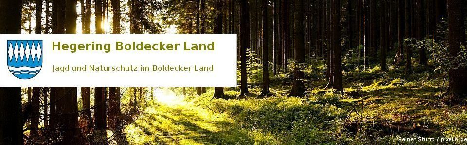 Hegering Boldecker Land