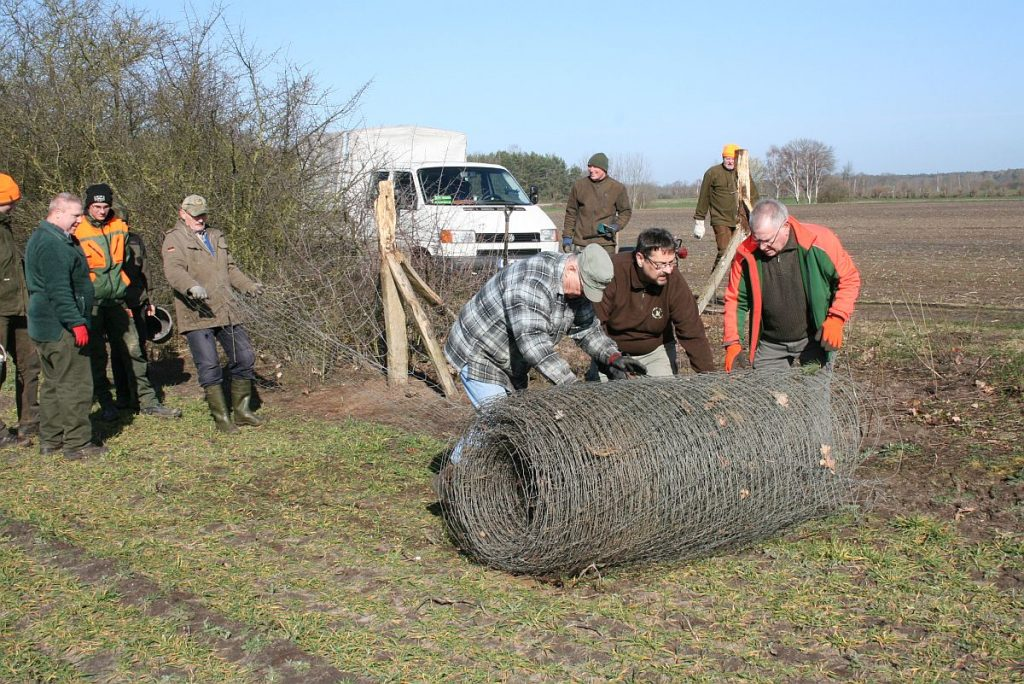 """Eine Gruppe aktiver Naturfreunde - bestehend aus Jägern, Treibern und weiteren Unterstützern - pflanzt am """"Wiesenweg"""" eine zweihundert Meter lange Hecke."""